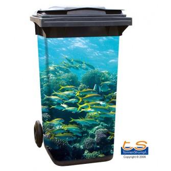 Motiv 140 - Aquarium