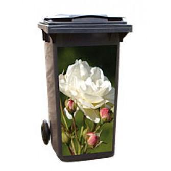 Aufkleber 1004-1 - Weiße Rose