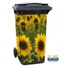 Motiv 127 - Sonnenblumen